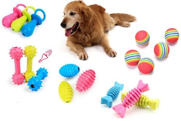 Kết quả hình ảnh cho đồ chơi thú cưng